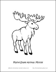 236x305 State Of Maine Coloring Page Select An Image, Print, And Color