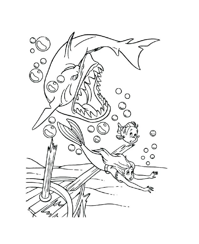 Mako Shark Coloring Page At Getdrawings Com Free For Personal Use