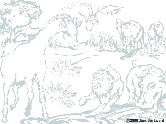 Male Lion Coloring Pages