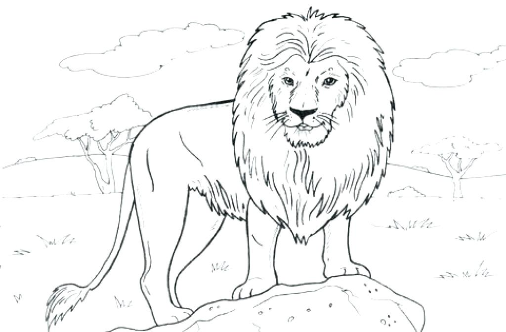 1024x672 Mountain Lion Coloring Pages Mountains Coloring Page Mountain Lion