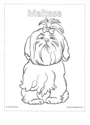 303x420 Kids Puppy Coloring Pages