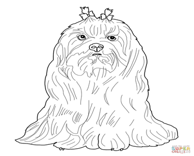 400x322 Lhasa Apso Coloring Book Page Image Clipart Images