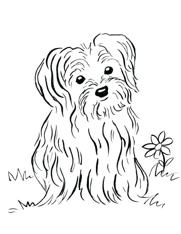 613x794 Printing Coloring Pages Of Puppies Dog Coloring Pages To Print