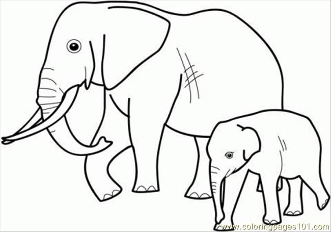650x455 Elephant Family Coloring Page