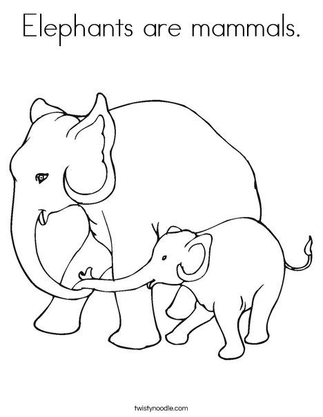 468x605 Elephants Are Mammals Coloring Page From Let