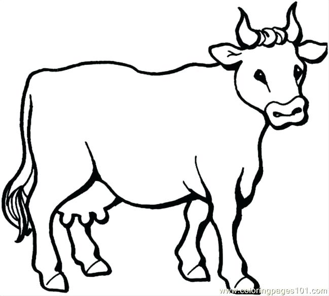 649x584 Mammal Coloring Pages Desert Animal Coloring Pages Mammal Coloring