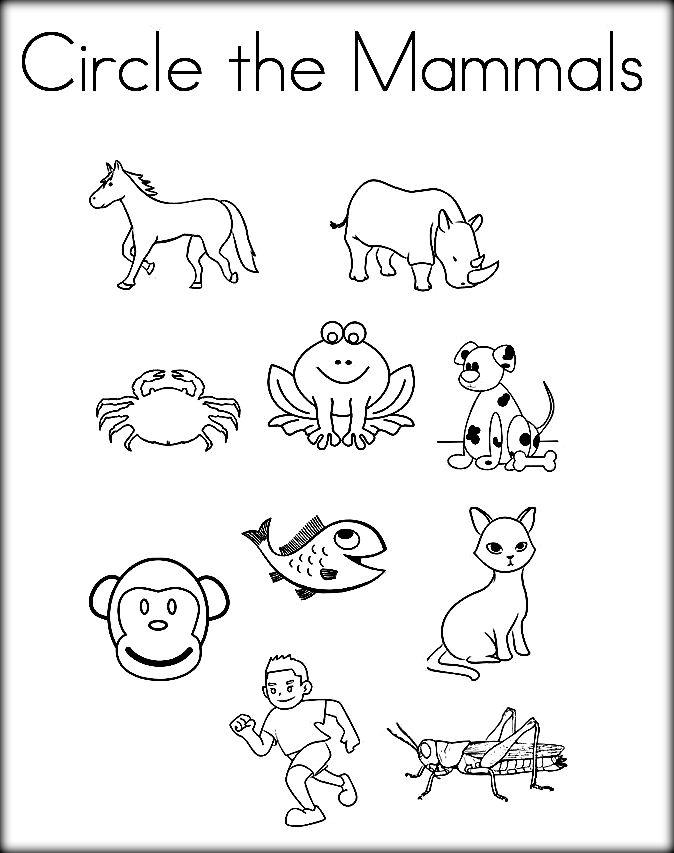 674x853 Mammals Coloring Pages
