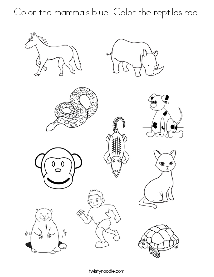 685x886 Mammals Coloring Pages