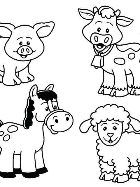 480x640 Rainforest Animal Coloring Pages Forest Animal Coloring Pages