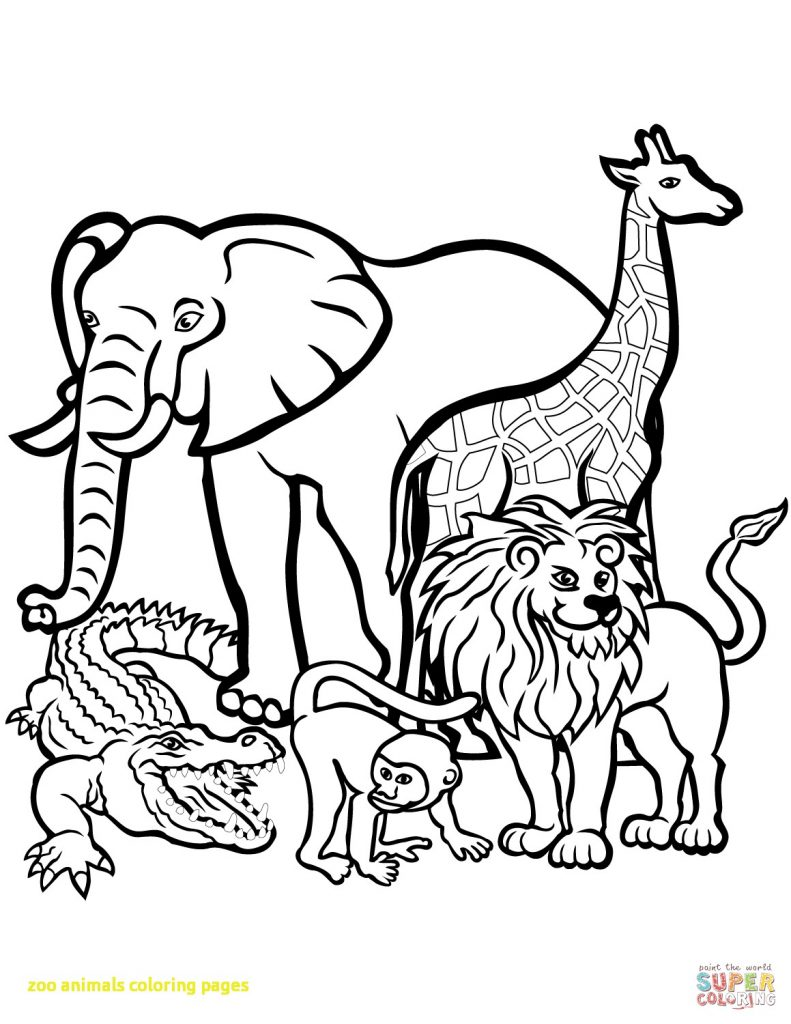 791x1024 Strange Mammal Coloring Pages Zoo Animal Sheets Deeptown Club