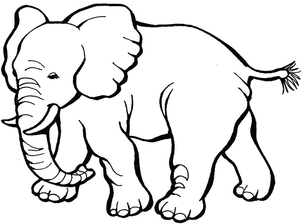 1025x762 Wildlife Coloring Pages Printable Animals Coloring Pages Animal