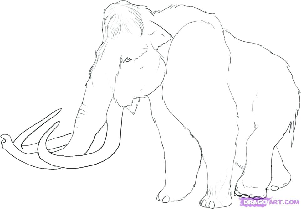 962x667 Wooly Mammoth Coloring Page Mammoth Coloring Page Woolly Mammoth