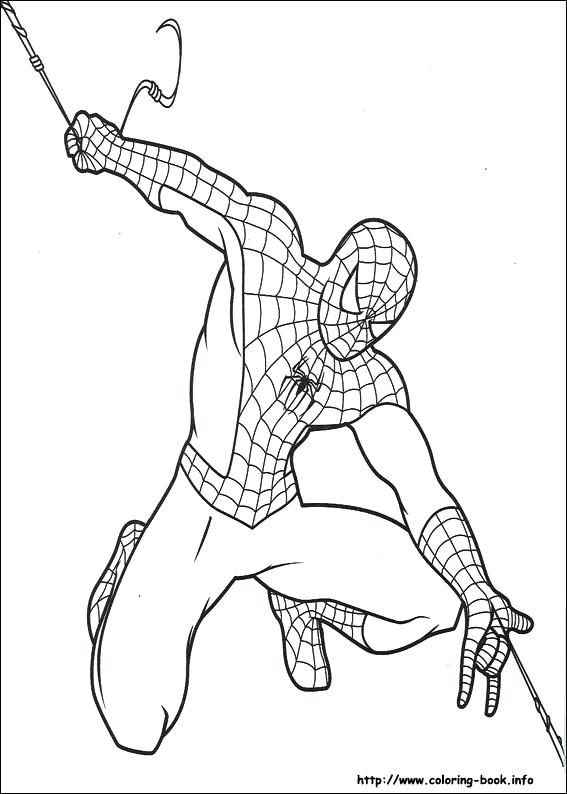 567x794 Spider Man Color Page Index Coloring Pages Spider Man Spider Woman