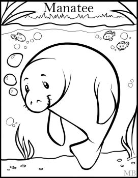271x350 Manatee Coloring Amazing Manatee Coloring Page