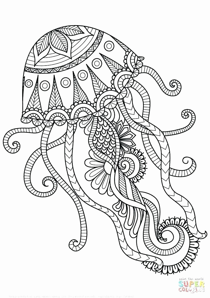 736x1041 Mandala Coloring Pages Line Mandala Coloring Pages Line Also