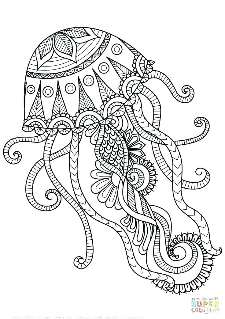 736x1041 Mandalas Coloring Pages For Adults