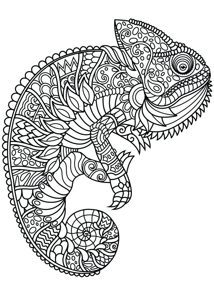 736x1040 Animal Mandala Coloring Pages Best Ideas About Adult Coloring