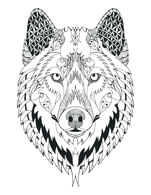 621x800 Wolf Coloring Page Realistic Wolf Coloring Pages Anime Wolf Pack