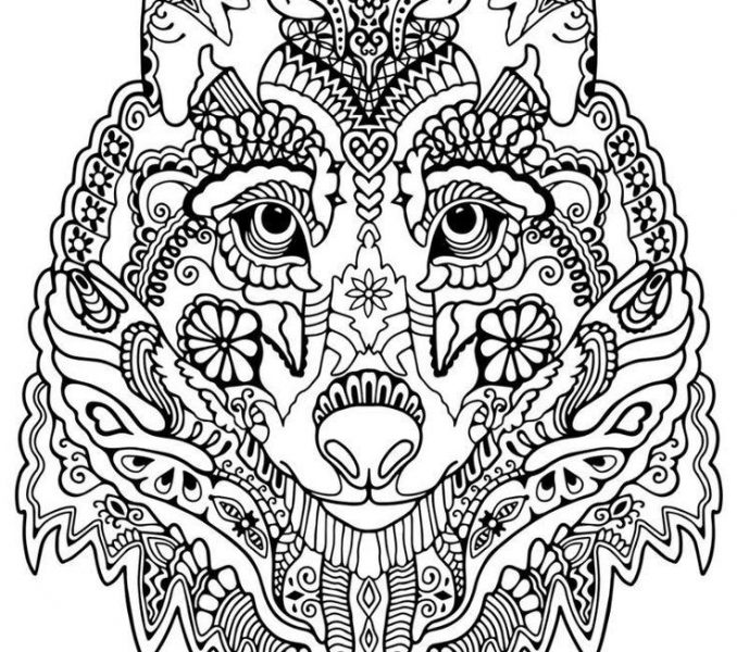 678x600 Wolf Coloring Sheet Wolf Coloring Pages For Adults Cute Wolf Adult