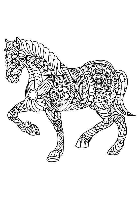 564x797 Bildresultat Mandala Horse Coloring Pages Adult Coloring