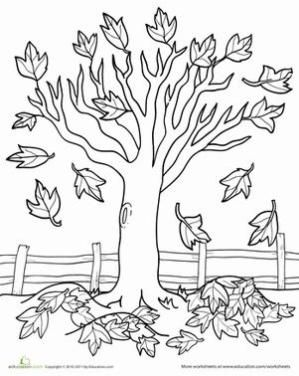 299x376 Fall Kindergarten Nature Worksheets Maple Tree Coloring Page