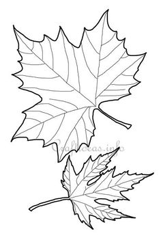 236x354 Leaf Printable Coloring Pages Leaves, Fall Leaves And Craft