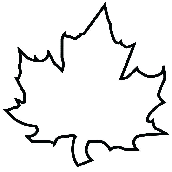 714x714 Leaves Coloring Pages Leaf Color Pages Fall Leaves Coloring Pages