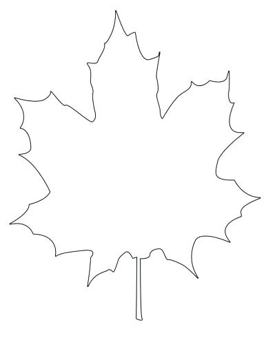386x500 Outline Of A Maple Leaf