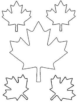 262x350 Free Kids Coloring Pages Maple Leaves