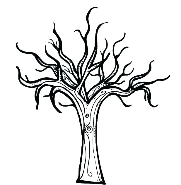 618x632 Maple Tree Coloring Page Maple Tree Coloring Page Tree Trunk