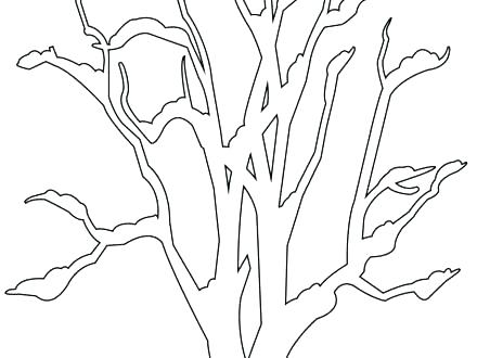 440x330 Tree Trunk Coloring Page Bare Tree Coloring Page This Is Bare Tree