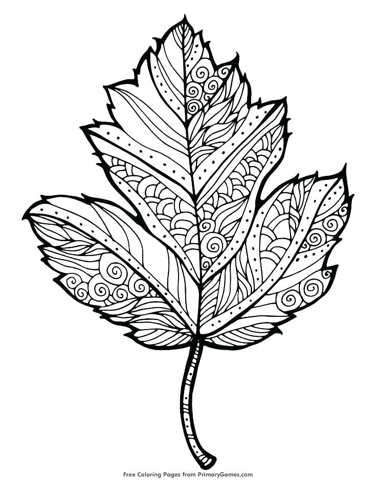 735x951 Autumn Printable Coloring Pages