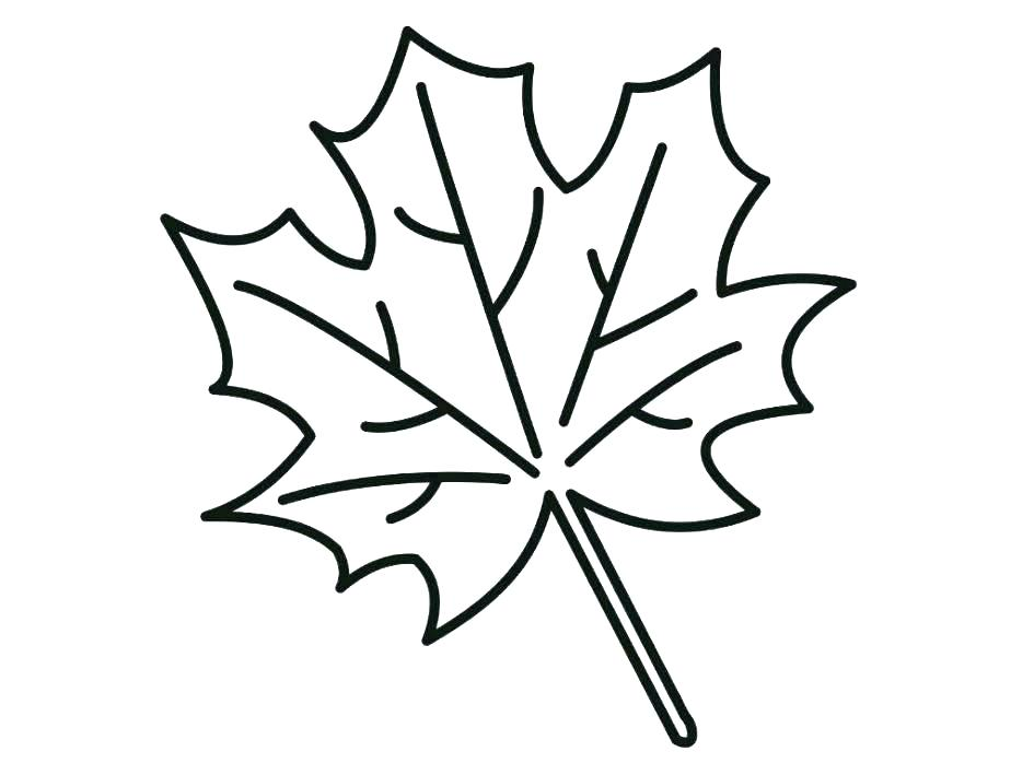 945x709 Coloring Page Leaf Red Maple Leaf Coloring Page Printable To Tiny