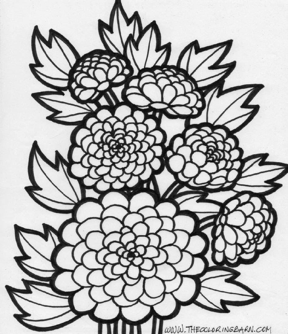 Marigold Coloring Page
