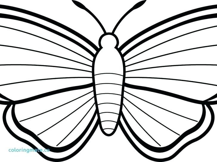 728x546 Marigold Coloring Page Click The Marigolds Coloring Pages Marigold