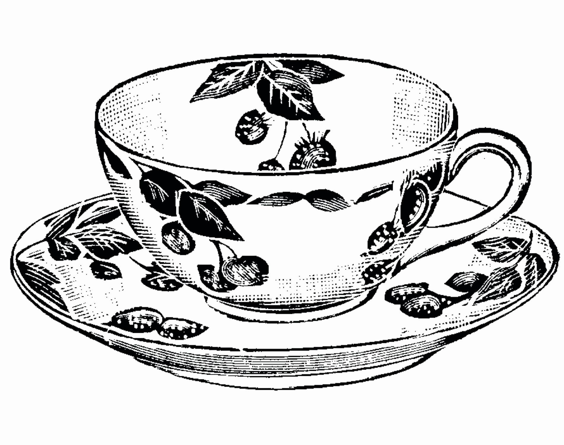1900x1500 Tea Cup Coloring Page Awesome Flower Pot Coloring Page Elegant