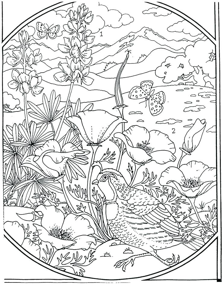 736x940 Coloring Page Flower Marigold Coloring Page Flowers Coloring Page