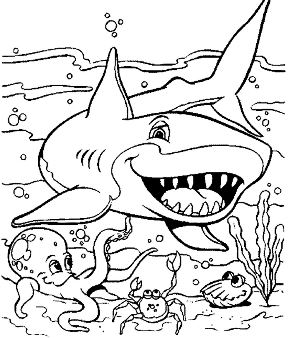 991x1145 Professional Free Animal Coloring Pages Sea Animals Page Ocean New