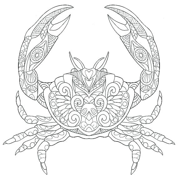 570x570 Coloring Pages Sea Animals Marine Life Coloring Pages Ocean