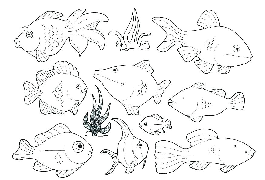 875x595 Marine Life Coloring Pages Coloring Pages Under The Sea Ocean Life