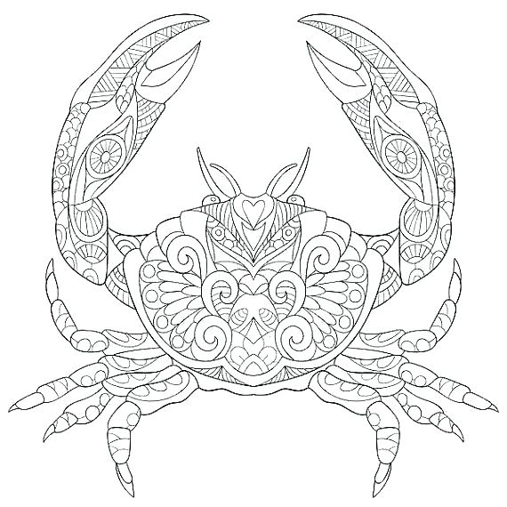 570x570 Marine Coloring Page