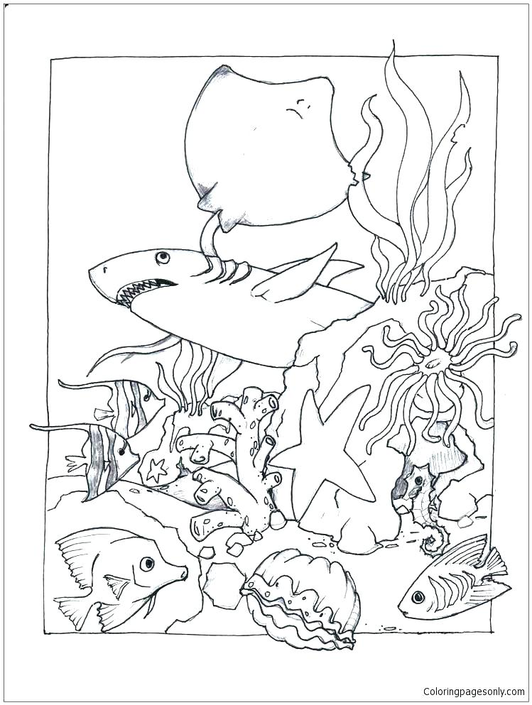 749x993 Marine Coloring Page Interesting Marines Coloring Pages New Marine