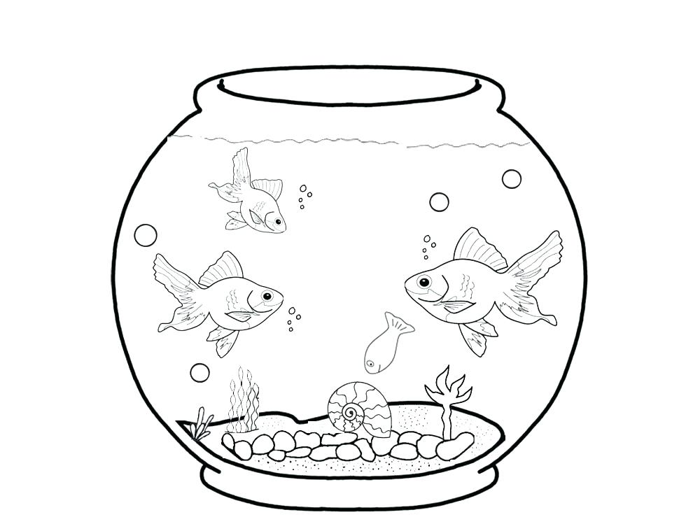970x739 Marine Coloring Pages Aquarium Coloring Page Marine Aquarium