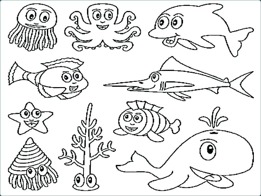 840x630 Marine Life Coloring Pages Marine Life Coloring Pages Ocean Fish