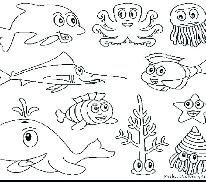 678x600 Coloring Pages Sea Animals Ocean Coloring Pages Sea Animal