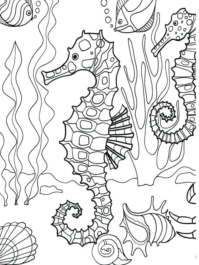 650x867 Free Printable Ocean Coloring Pages Under The Sea Coloring Pages