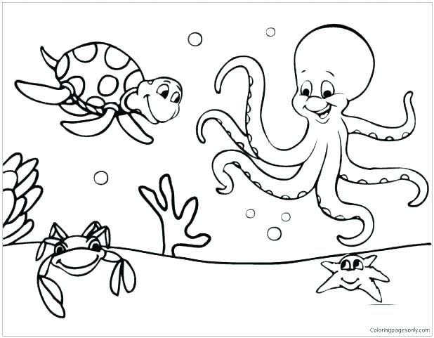 618x481 Huge Gift Marine Life Coloring Pages Sea