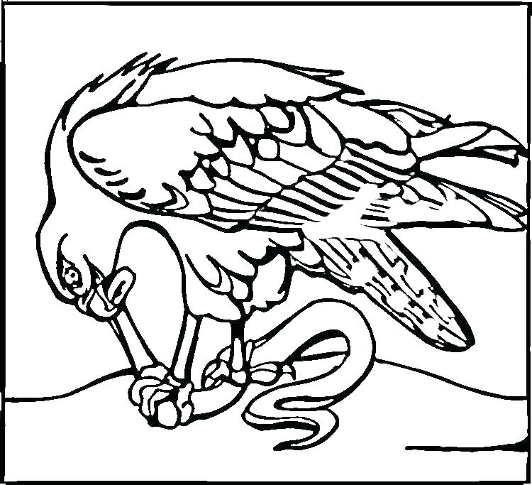 750x683 Seahawks Coloring Pages Coloring For Kids Pages Wonderful