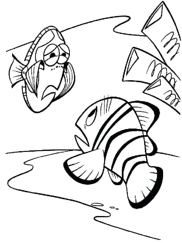 750x1000 Finding Nemo Coloring Pages Coloring Page Finding Coloring Pages