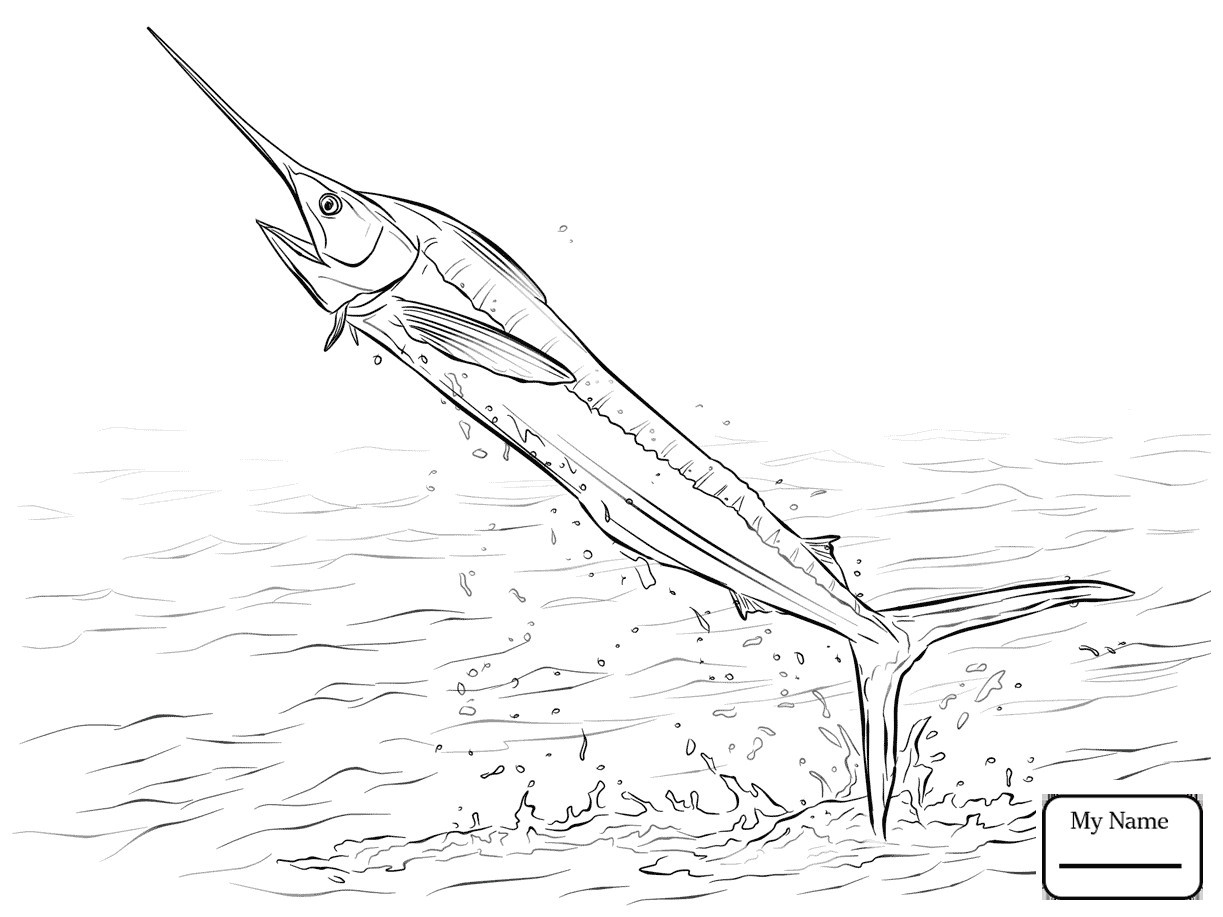 1223x917 Realistic Atlantic Blue Marlin Coloring Pages